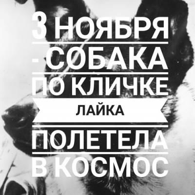 03.11 - Лайка полетела в космос