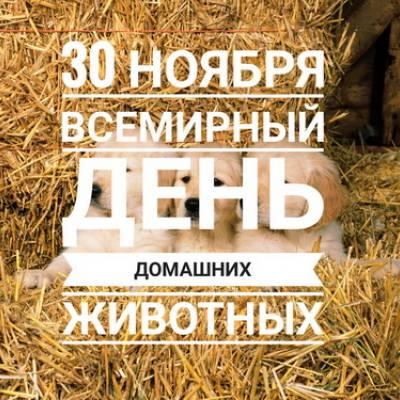 30.11 - Всемирный день домашних животных