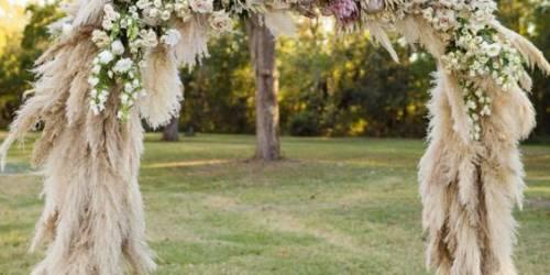 Сценарий свадьбы без тамады. Для начинающего ведущего.