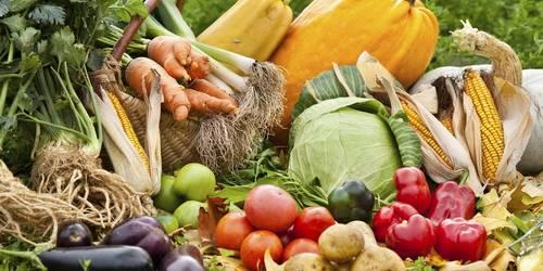Сценарий праздника урожая