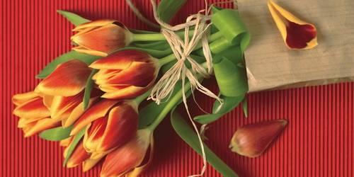 Женщина, весна, любовь