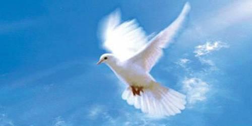 Сценарий Дня мира